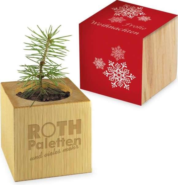 Pflanz-Holz Weihnachten inkl Lasergravur auf einer Seite