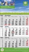 3 Monats-Wandkalender Standard 2 Plus, deutsch