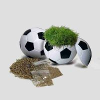 Rasender Fußball, Zimmerrasen