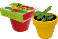 Naschgemüse Colour, Paprika, 1-4 c Digitaldruck inklusive frei wählbar, grün