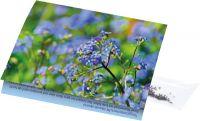 Klappkärtchen Vergissmeinnicht, 90 x 60 mm, Vergissmeinnicht, 1-4 c Digitaldruck inkl.