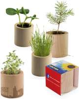 Pflanz-Holz rund ink. Rundumlaserung - Glücksklee-Zwiebeln individuell