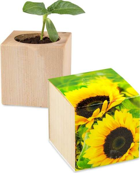Pflanz-Holz - Standardmotiv - Sonnenblume inkl. 2 Seiten gelasert