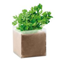 """PARSELY Pflanz-Set """"Petersilie"""" beige"""