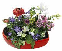 Blumen-Herz, bunte Blumenmischung